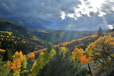 Photograph - Sunbeams Light Aspens Near Telluride Airport by Ray Mathis