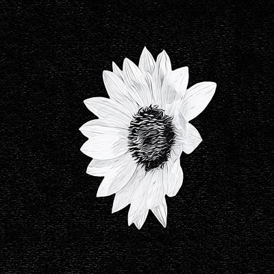 Photograph - Sunflower Cutout In Black And White by Kay Brewer