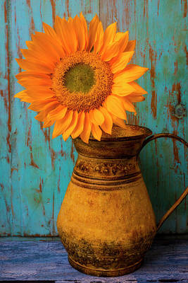 Photograph - Sunflower In Rustic Pitcher by Garry Gay