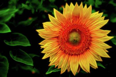 Digital Art - Sunflower by Kevin McClish