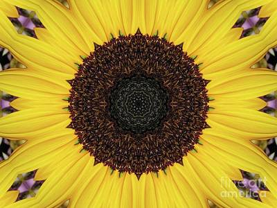 Photograph - Sunflower Mandala Kaleidoscope Abstract 1 by Rose Santuci-Sofranko