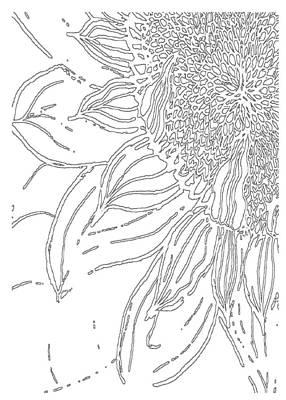 Drawing - Sunflower - Paint My Sketch By Delynn Addams by Delynn Addams