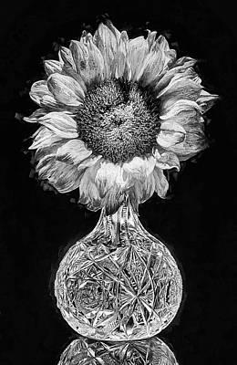 Digital Art - Sunflower Still Life Black And White by JC Findley
