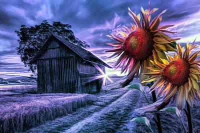 Photograph - Sunflower Watch In Night Shades by Debra and Dave Vanderlaan