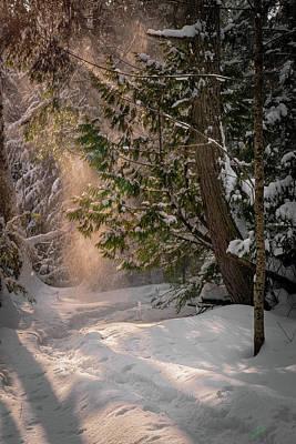 Photograph - Sunlit Powder by David Heilman
