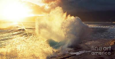 Photograph - Sunlit Wave - Hawaii by Charmian Vistaunet