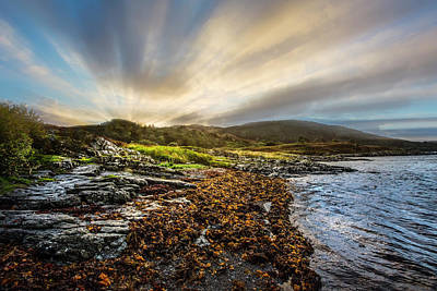 Photograph - Sunrays At Dawn Along The Coast by Debra and Dave Vanderlaan
