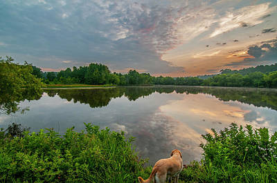 Art Print featuring the photograph Sunrise At Ross Pond by Matthew Irvin