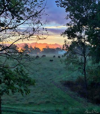 Photograph - Sunrise Breakfast by Andrea Platt