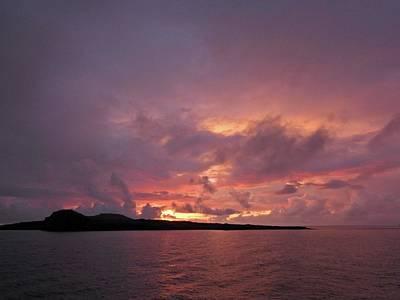 Animals Royalty-Free and Rights-Managed Images - Sunrise Espanola Island by Jennifer Wheatley Wolf