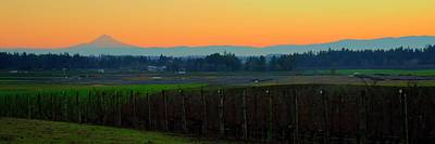 Photograph - Sunrise Mt. Hood Wine Country by Jerry Sodorff