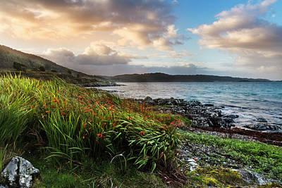 Photograph - Sunrise On The Coast Of Scotland by Debra and Dave Vanderlaan