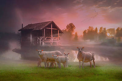 Photograph - Sunrise On The Farm On A Dreamy Morning by Debra and Dave Vanderlaan