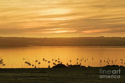 Photograph - Sunrise Over The Roseland Cornwall by Terri Waters
