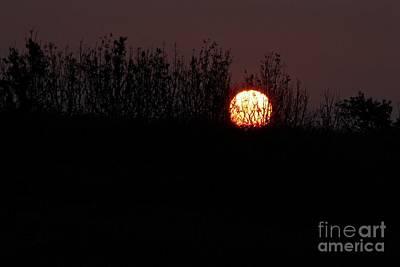 Photograph - Sunrise Silhouette by Ann E Robson