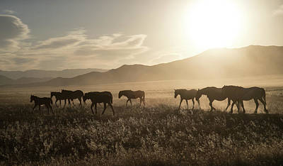 Photograph - Sunrise Travelers by Kent Keller