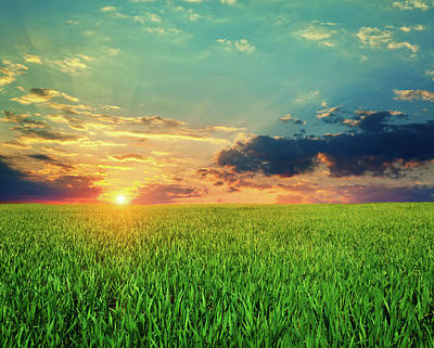 Photograph - Sunsed Landscape by Avalon studio