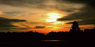 Photograph - Sunset And Silhouette by Patricia Strand