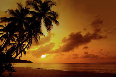 Photograph - Sunset At A Tropical Beach In The by Cdwheatley
