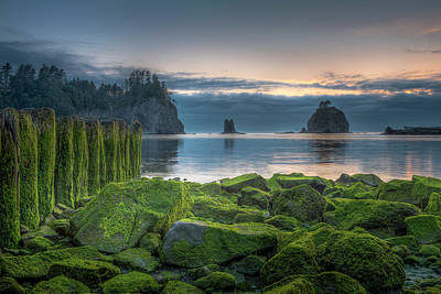 Photograph - Sunset At La Push by Thomas Gaitley