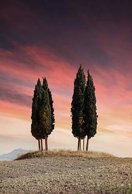 Photograph - Sunset At Toscany by Jaroslaw Blaminsky