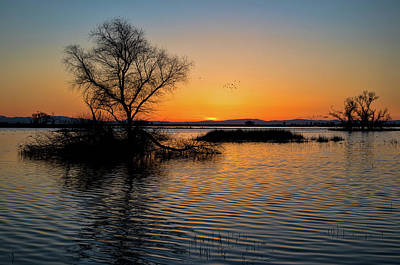 Photograph - Sunset In The Refuge by Cheryl Strahl