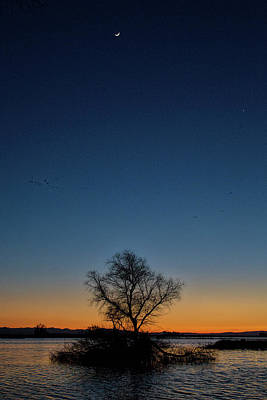 Photograph - Sunset In The Refuge With Moon by Cheryl Strahl