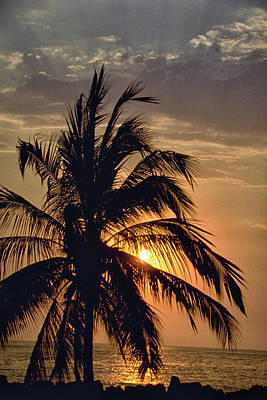 Photograph - Sunset - Mexico by Rick Veldman