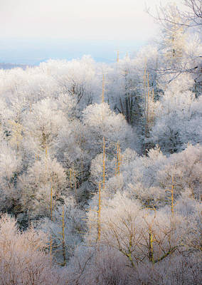 Photograph - Sunset On Hoarfrost by Mark Duehmig