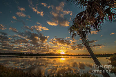 Photograph - Sunset On The Pond by Tom Claud