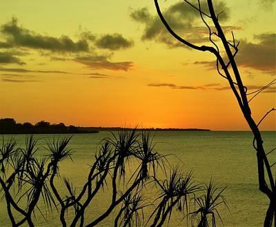 Photograph - Sunset Yellow by Joan Stratton