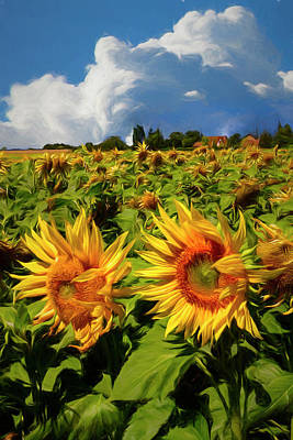 Photograph - Sunshine On A Summer Day Painting by Debra and Dave Vanderlaan