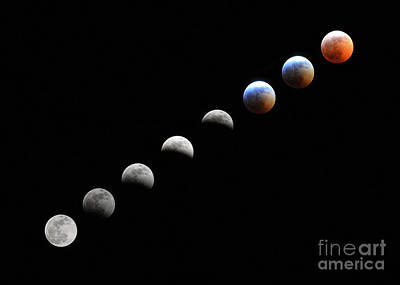 Photograph - Super Blood Wolf Moon by Charles Owens