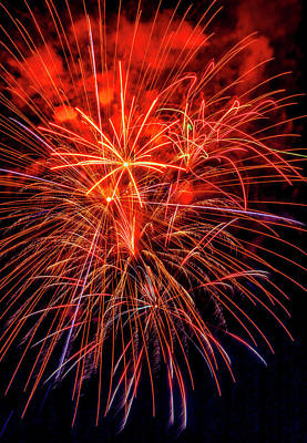 Photograph - Super Holiday Fireworks by Garry Gay
