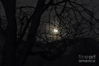 Photograph - Super Wolf Moon by Susan Warren