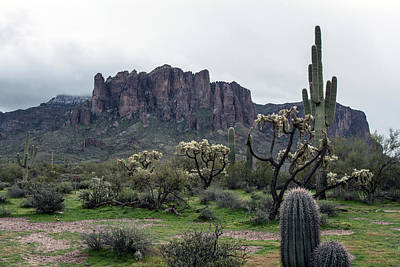 Photograph - Superstition Mountain 4636-021819 by Tam Ryan