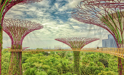 Photograph - Supertree Grove by Chris Cousins
