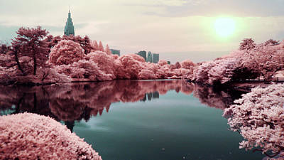 Photograph - Surreal Lake With Pink Trees by Zachstern.com