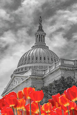 Surrealism Royalty-Free and Rights-Managed Images - Surreal US Capitol by Betsy Knapp