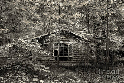 Abandoned Elkmont Wall Art - Photograph - Surrender by Mike Eingle