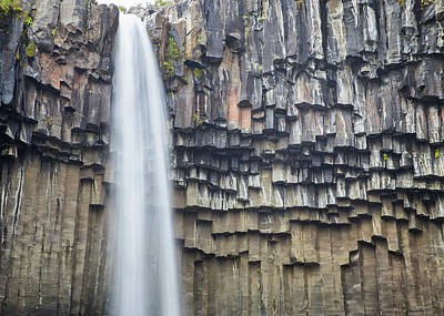 Photograph - Svartifoss Portrait Iceland by Nathan Bush