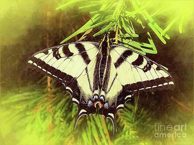 Animals Digital Art - Tiger Swallow Tail Papilio Natural Habitat by Mona Stut