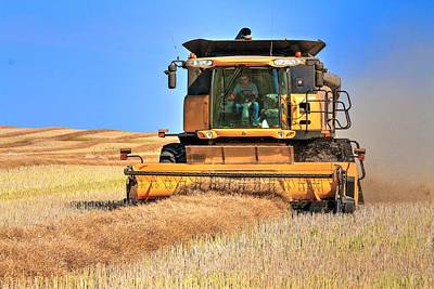 Photograph - Swathing In A Holland by David Matthews