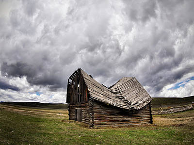 Photograph - Sway Back by Leland D Howard