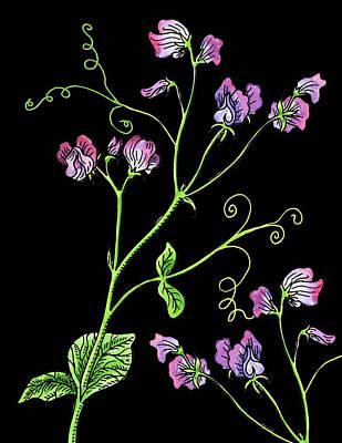 Painting - Sweet Pea Wildflowers Watercolour  by Irina Sztukowski