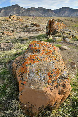 Photograph - Sweet Potato Boulder In Book Cliff Desert by Ray Mathis