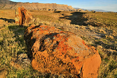 Photograph - Sweet Potato-like Boulders At The Book Cliffs by Ray Mathis