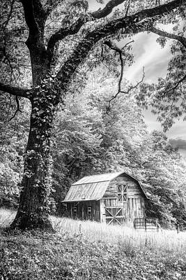 Photograph - Sweet Sweet Country In Black And White  by Debra and Dave Vanderlaan