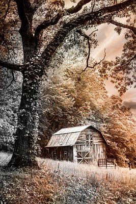 Photograph - Sweet Sweet Country In Sepia Tones by Debra and Dave Vanderlaan