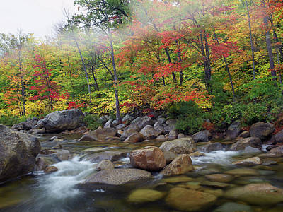 Scenery Photograph - Swift River Flowing Through Fall by Tim Fitzharris/ Minden Pictures